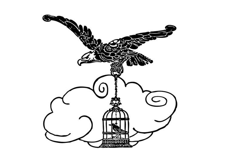 Dibujo Aguila Perfect Guila Calva Dibujo Para Colorear
