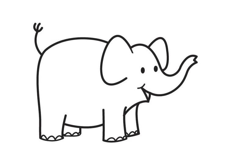 Dibujo para colorear elefante - Img 17905