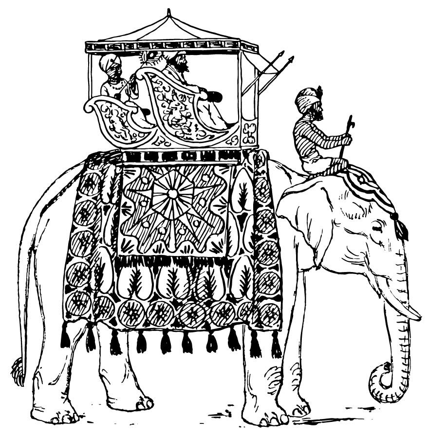 Dibujo para colorear Elefante en India - Img 16600