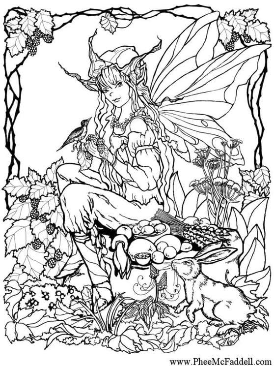 Dibujo para colorear Elfo en el bosque   Img 6906