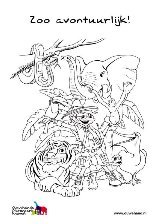 Dibujo para colorear en el zoo - Img 25581