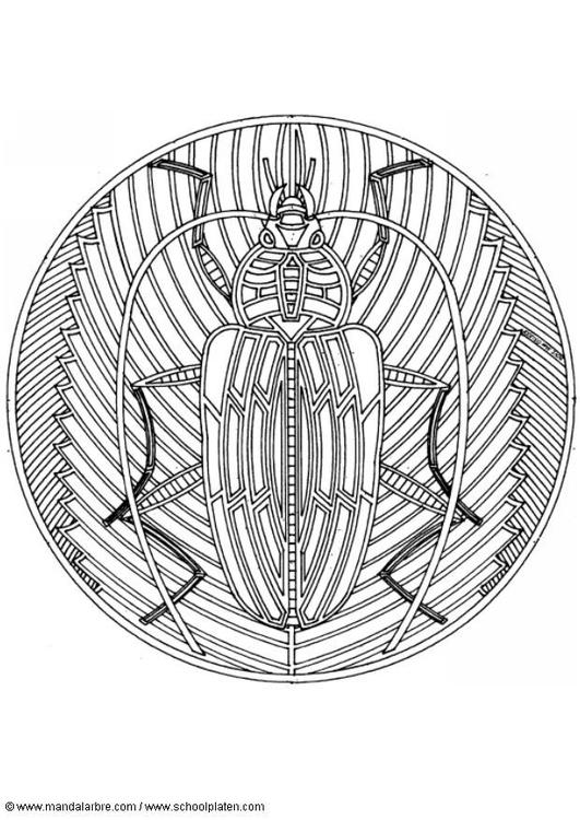 Dibujo para colorear Escarabajo - Img 4576