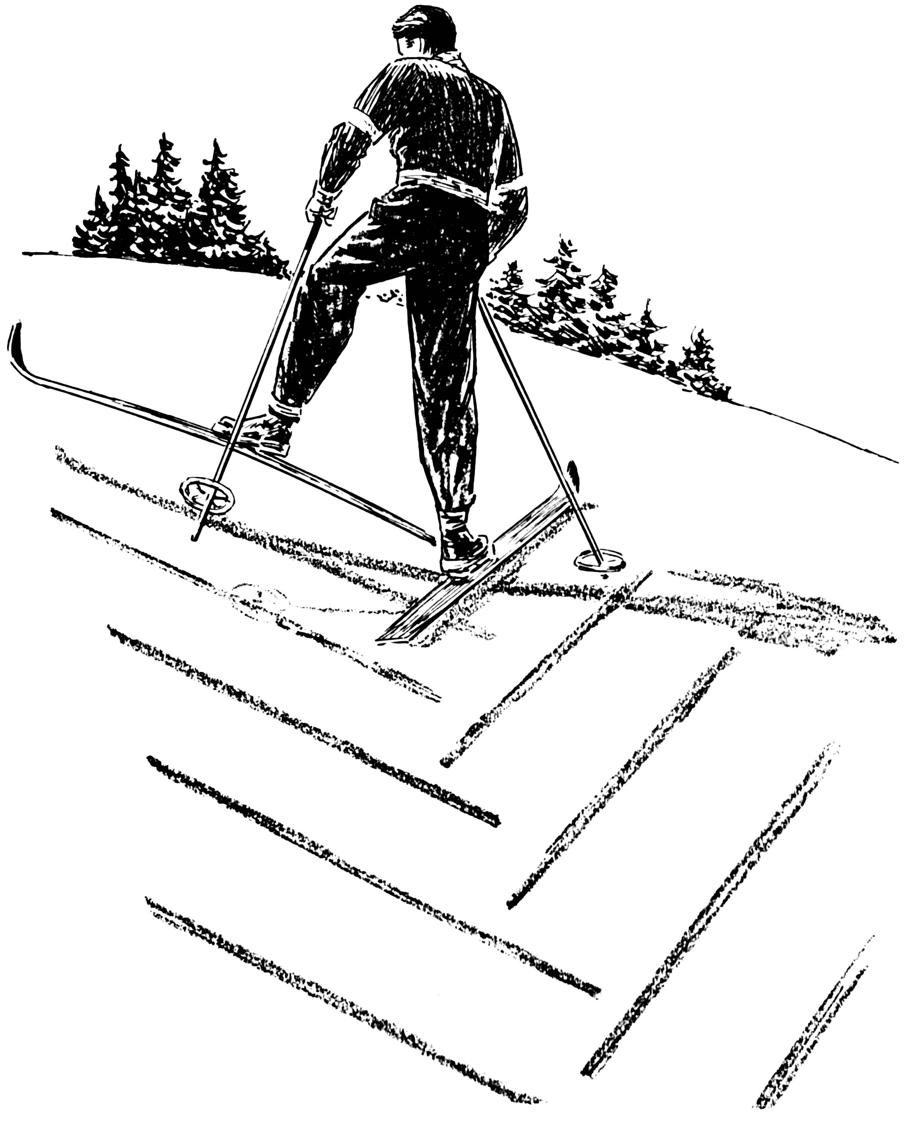 Esquiar Para Colorear