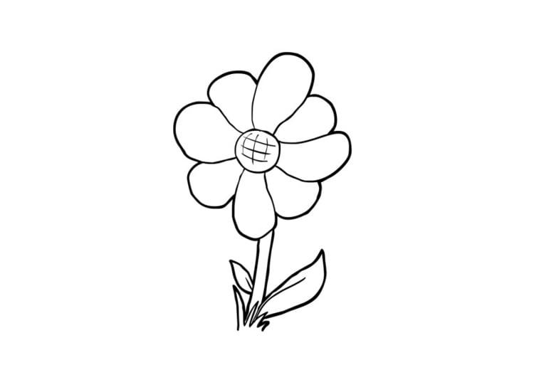 Dibujo para colorear Flor - Img 13948