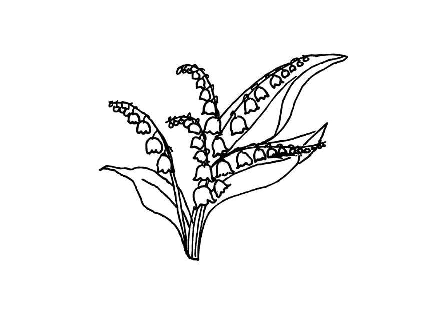 Dibujo Para Colorear Flores De Mayo Dibujos Para Imprimir