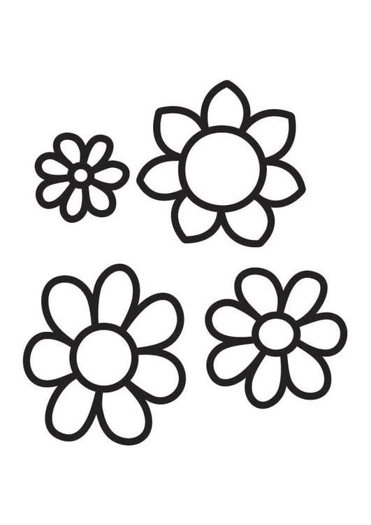 Dibujo Para Colorear Flores Img 18339 Images
