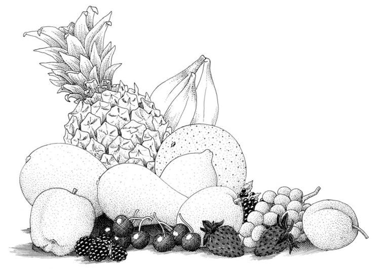 Dibujo Para Colorear Fruta Img 9392 Images