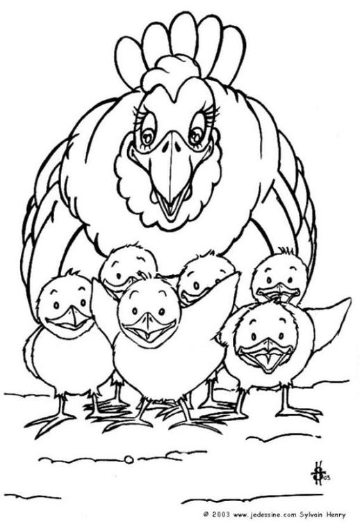 Dibujo para colorear Gallina y polluelos - Img 6784