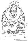 Dibujo para colorear Gallina y polluelos