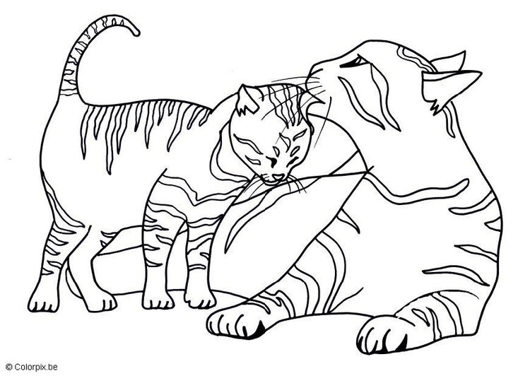 Dibujo para colorear Gatitos - Img 17439