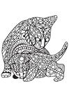 Dibujo para colorear gato con gatito