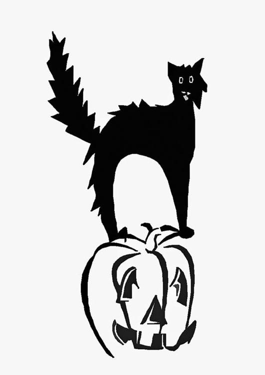 Dibujo para colorear Gato en calabaza - Img 16548