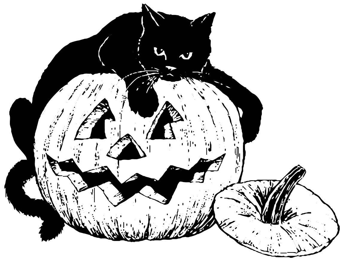 Dibujo para colorear Gato negro sobre calabaza - Img 16101
