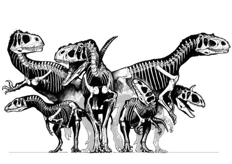 Dibujo para colorear Grupo de esqueletos de dinosaurios   Img 8297
