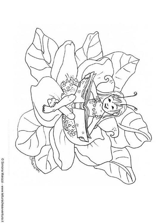 Dibujo para colorear Hada con libro - Img 12399