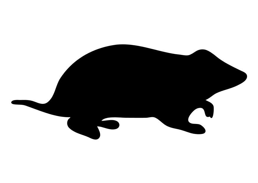 Image result for rodents icon