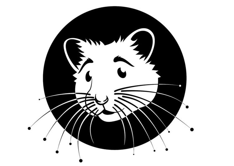 Dibujo para colorear hamster - Img 24671