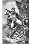 Dibujo para colorear Hercules y la serpiente