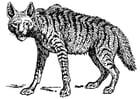 Dibujo para colorear hiena