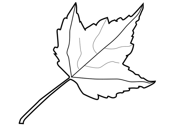 Dibujo para colorear hoja - Img 20551