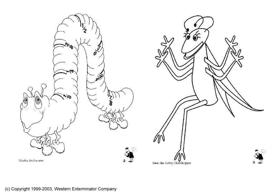 Bonito Insectos Relámpago Para Colorear Motivo - Dibujos Para ...