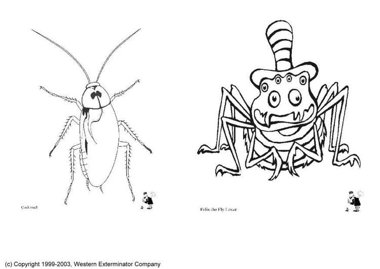 Dibujos De Insectos Para Colorear Para Ninos: Dibujo Para Colorear Insectos