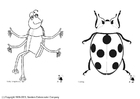 Dibujo para colorear Insectos