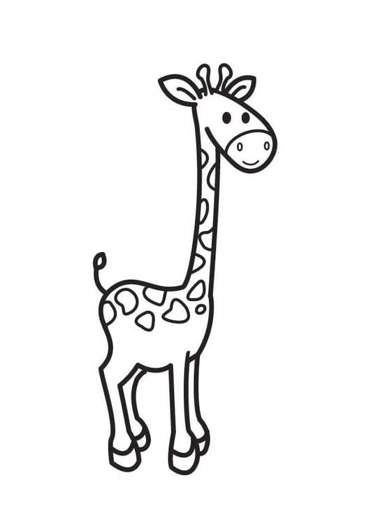 Dibujo para colorear jirafa - Img 17530
