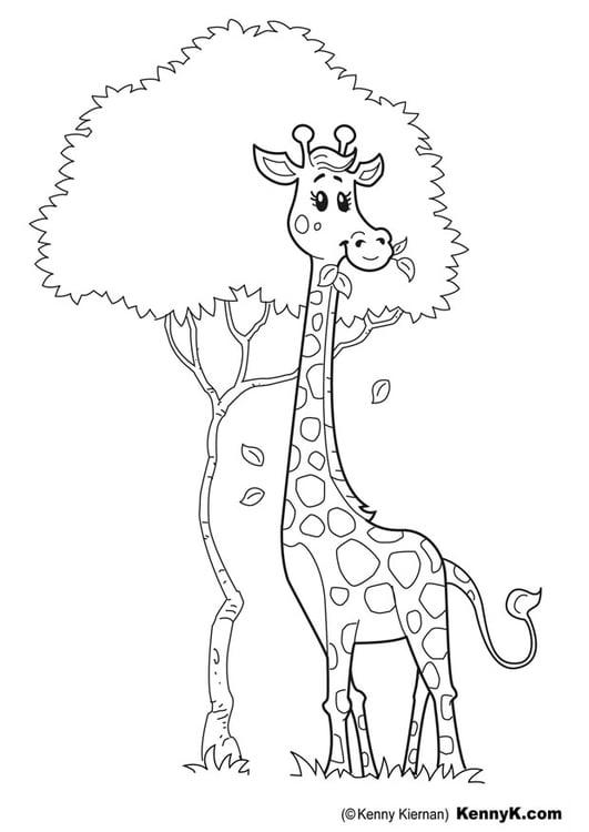 Dibujo para colorear jirafa   Img 20049