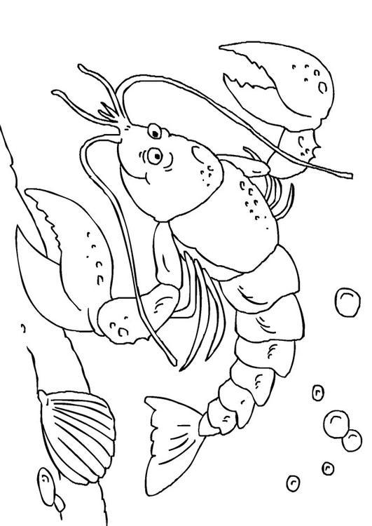 Excepcional Página Para Colorear De Langosta Galería - Dibujos de ...