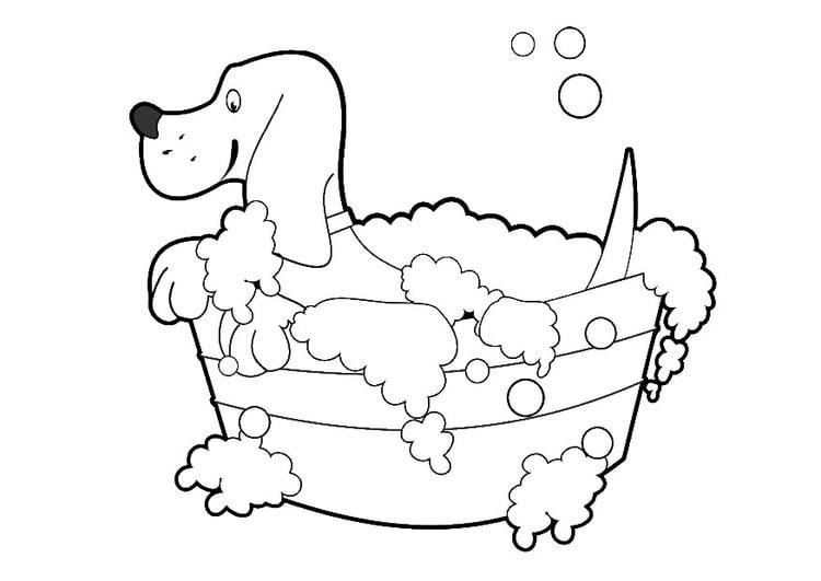 Dibujo Para Colorear Lavado De Perro Dibujos Para Imprimir
