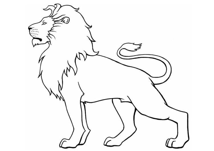 Dibujo para colorear Len  Img 8904