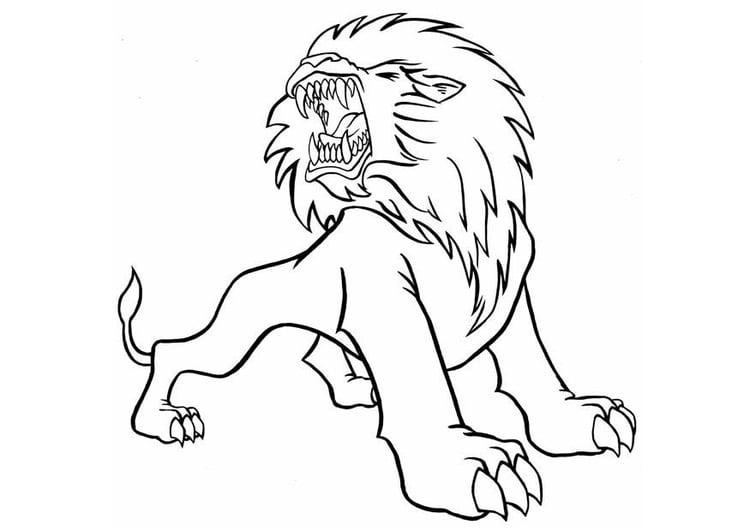 Dibujo Para Colorear León Enfadado Img 8837