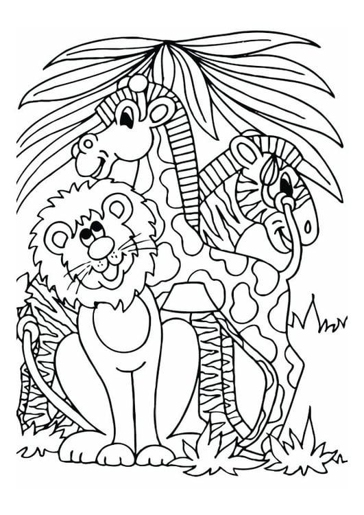 Dibujo Para Colorear León Jirafa Y Cebra Img 12528
