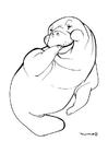 Dibujo para colorear León marino