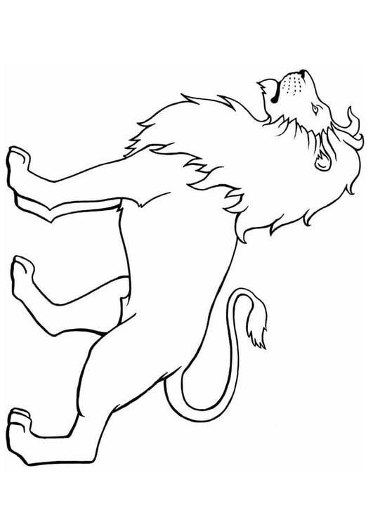 Dibujo para colorear León - Img 8904