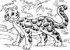 Dibujo para colorear leopardo nebuloso