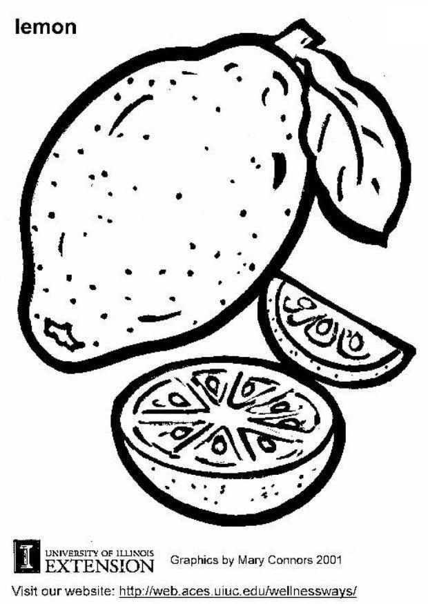 Dibujo para colorear Limón - Img 5814