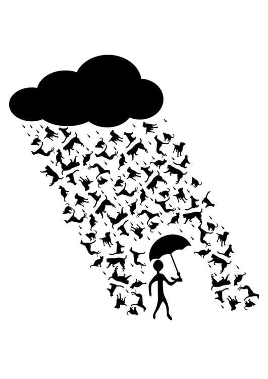 Dibujo Para Colorear Llueve Perros Y Gatos Img 22882