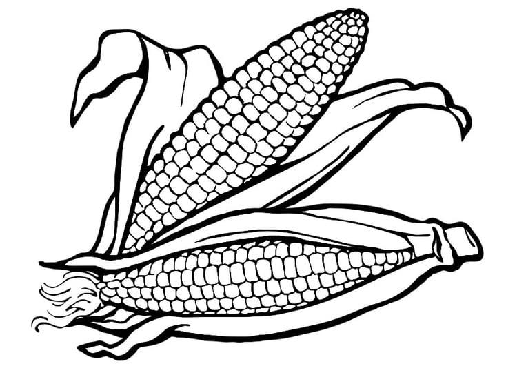 Dibujo para colorear maíz - Img 19177