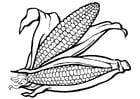 Dibujo para colorear maíz