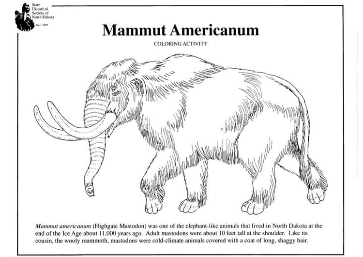 Dibujo Para Colorear Mamut Americano Img 7956