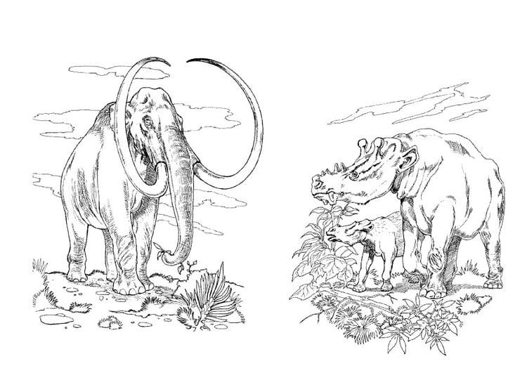 Dibujo Para Colorear Mamut Hervíboros Img 9102