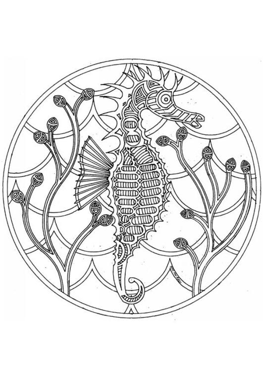 Dibujo para colorear Mandala caballito de mar - Img 4544
