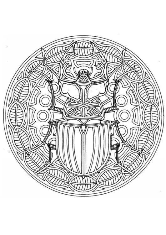 Dibujo Para Colorear Mandala Escarabajo Img 4543 Images