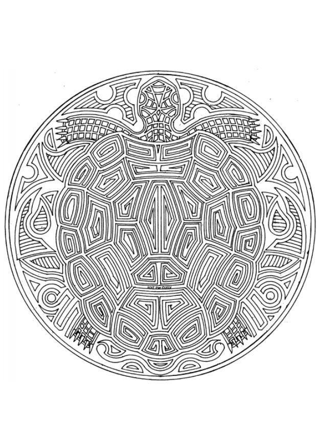 Uil Kleurplaat Volwassenen Dibujo Para Colorear Mandala Tortuga Img 18708 Images