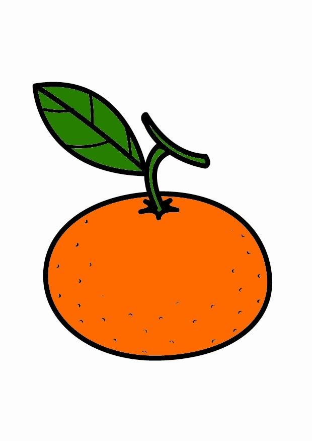 Dibujo para colorear mandarina  Img 23205