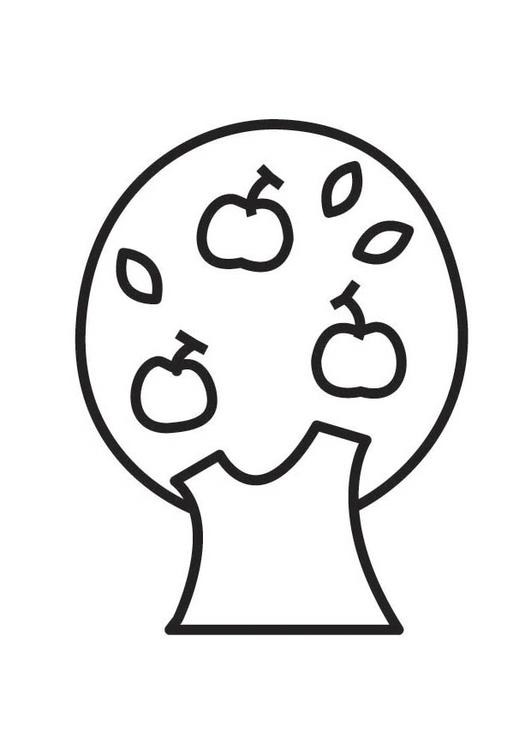 Dibujo para colorear manzano - Img 18544