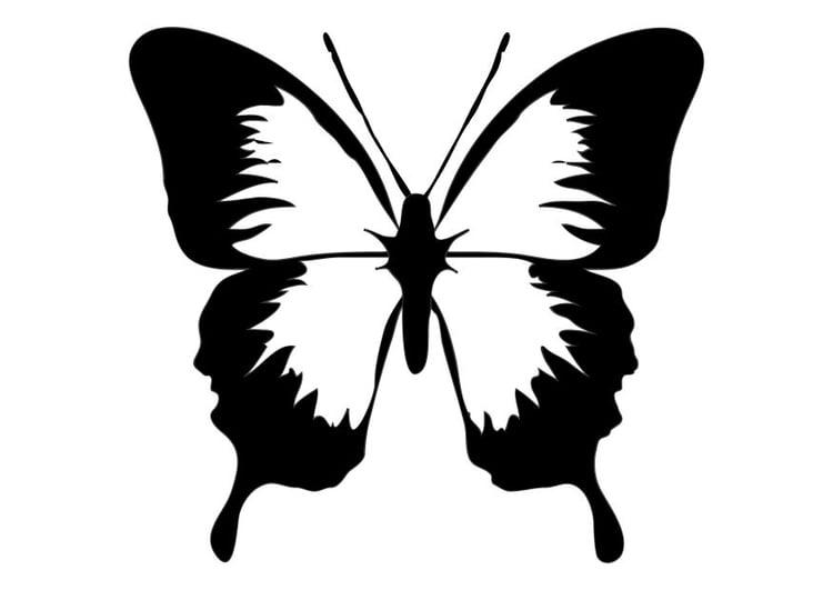 Dibujo para colorear Mariposa - Img 10187