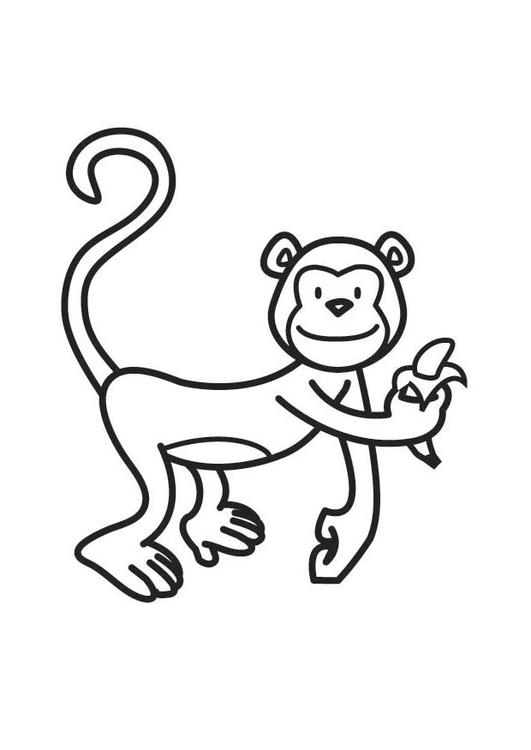 Dibujo para colorear mono - Img 17524
